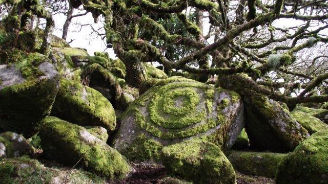 Druid's Stone - Paul via twitter