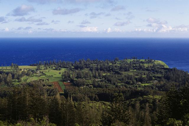 Norfolk Island - Tourism Australia via canva 7 (1)